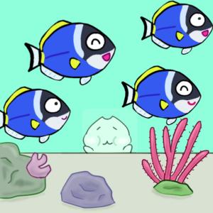 パウダーブルータン【またねこのお魚紹介】